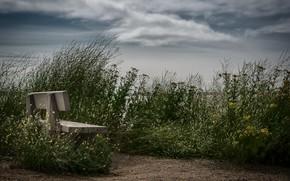 Картинка природа, берег, скамья