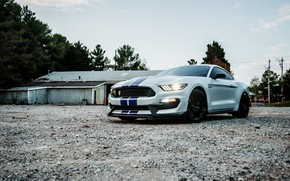 Картинка Mustang, Ford, Sunset, White, Evening, Shalby