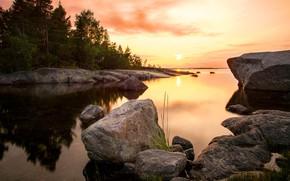Картинка море, лес, солнце, пейзаж, закат, природа, камни, Швеция, берега, Балтийское море