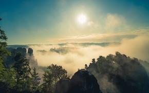 Картинка утро, Эльбские Песчаниковые горы, горы, туман, Германия