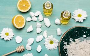 Картинка камни, лимон, масло, хризантемы, Спа