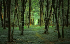 Обои лес, деревья, digital painting