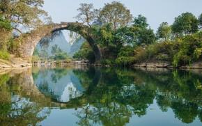 Картинка деревья, мост, озеро, отражение, круг, арка