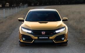 Картинка Honda, Civic, Type R, 2019, 50 Years in Australia