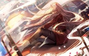 Картинка девушка, аниме, арт, длинные волосы, 002, Darling In The Frankxx, Милый во Франксе