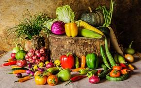 Картинка пень, кукуруза, лук, тыква, перец, овощи, помидоры, морковь, капуста, огурцы, репчатый