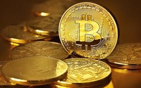 Картинка лого, монеты, валюта, bitcoin, биткоин, cryptocurrency