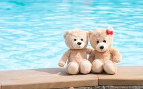 Обои море, пляж, любовь, игрушка, медведь, мишка, пара, love, двое, beach, bear, romantic, couple, teddy, cute
