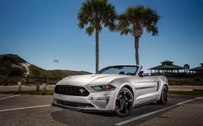 Картинка Ford, Convertible, Mustang GT, Califorina, 2019