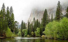 Картинка United States, California, Spring Flood, Yosemite Village