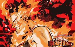 Картинка огонь, My Hero Academia, Boku No Hero Academia, Моя Геройская Академия, Тодороки