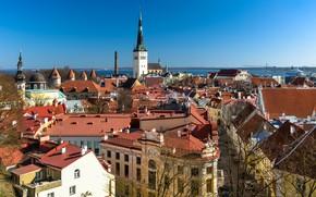 Картинка здания, дома, крыши, Эстония, Таллин, панорама