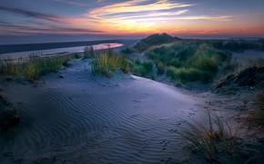 Картинка Nederland, dunes, Friesland, Ameland