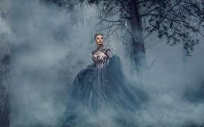 Картинка девушка, туман, дерево, платье, королева, Adam Bird, Rachel Perera