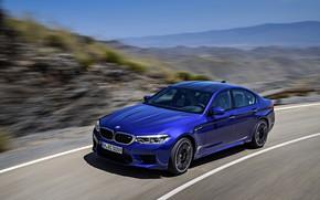 Картинка дорога, движение, скорость, BMW, седан, BMW M5, 2017, M5, F90