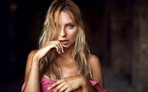 Обои взгляд, секси, поза, фон, модель, портрет, макияж, платье, прическа, блондинка, красотка, боке, Giovanni Zacche