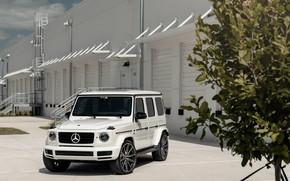 Картинка Mercedes, Tree, AMG, White, G63, Vossen, Brick, W464