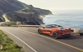 Картинка машина, вода, движение, Chevrolet, спорткар, convertible, Stingray, Corvette C8