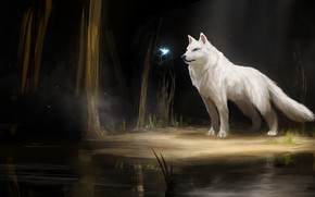 Картинка лес, ночь, озеро, птица, волк, фэнтези