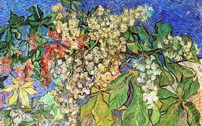 Картинка Vincent van Gogh, Auvers sur Oise, Blossoming Chestnut Branches