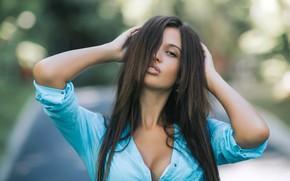 Картинка взгляд, поза, модель, портрет, руки, макияж, брюнетка, прическа, рубашка, красотка, боке, смуглая, в синем, Ivan …