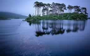Картинка деревья, озеро, отражение, остров, Ирландия, Ireland, Connemara, Коннемара, Derryclare Lough, Озеро Дерриклер Лох