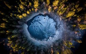 Картинка лес, озеро, Norway, Oslo, Oslo Fylke