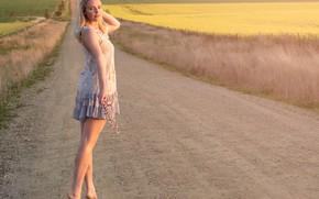 Картинка дорога, поля, платье, ножки