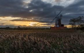 Картинка поле, небо, трава, облака, закат, вечер, колосья, сумерки, водоем, ветряная мельница