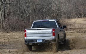 Картинка Chevrolet, грязь, пикап, Custom, корма, Silverado, 2020