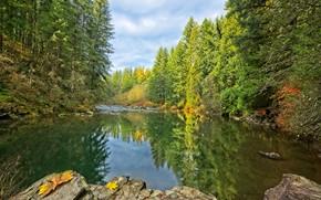 Картинка осень, лес, небо, вода, деревья, отражение, река, камни, Washington, East Lewis River, Mouton Falls Park, …