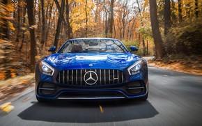 Картинка Roadster, Mercedes-Benz, вид спереди, AMG, 2018, GT C