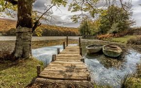 Картинка деревья, пейзаж, природа, озеро, лодки, причал, леса, берега, мосток