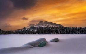 Картинка зима, лес, небо, снег, горы, Timothy Poulton