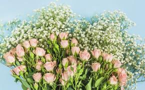 Картинка цветы, розы, букет, розовые, pink, flowers, beautiful, romantic, roses