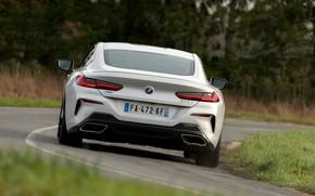 Картинка белый, купе, BMW, 2018, корма, 8-Series, 8er, G15, 840d xDrive M Sport