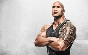 Картинка фон, мужик, татуировки, Дуэйн Джонсон, Dwayne Johnson, Dwayne Johnson (The Rock)