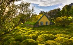Картинка зелень, небо, трава, солнце, облака, деревья, домик, Исландия, Iceland