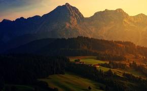 Картинка лес, пейзаж, закат, горы, природа, поля, высота, вечер, ели, деревня, Альпы, домики, ярко, луга, поселение, ...