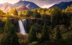 Картинка лес, вода, Горы