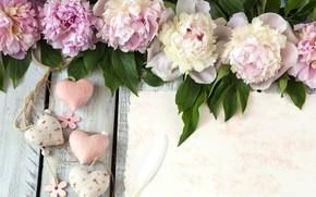 Картинка цветы, сердце, pink, flowers, romantic, hearts, пионы, peonies