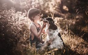 Картинка собака, мальчик, друзья