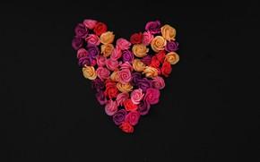 Картинка фон, черный, сердце, розы, бутоны