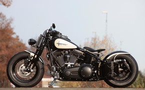Картинка Harley-Davidson, Motorbike, Cross Bones, Customized, Thunderbike, By Thunderbike, BONE HUNTER