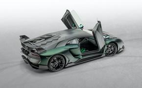 Картинка Lamborghini, двери, суперкар, Aventador, Mansory, 2020, SVJ, Cabrera