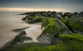 Картинка море, небо, облака, водоросли, камни, берег, мох, зеленые, прибой, глыбы, булыжники, каменистый, каменистая гряда, каменюги