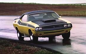 Картинка Dodge, Challenger, Rain, Muscle car, Vehicle