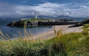 Картинка песок, море, пляж, трава, облака, пейзаж, горы, природа, скалы, побережье, маяк, остров, Англси, Инис-Лландуин, Llanddwyn's …