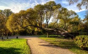 Картинка осень, небо, солнце, облака, деревья, скамейка, пруд, парк, газон, дорожка, Санкт-Петербург, Россия, кусты, Екатерингоф, Park …