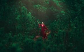 Картинка girl, forest, dress, model
